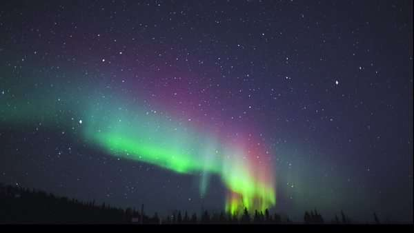 Locked off shot showing the aurora light against a sky full of stars Royalty-free stock video