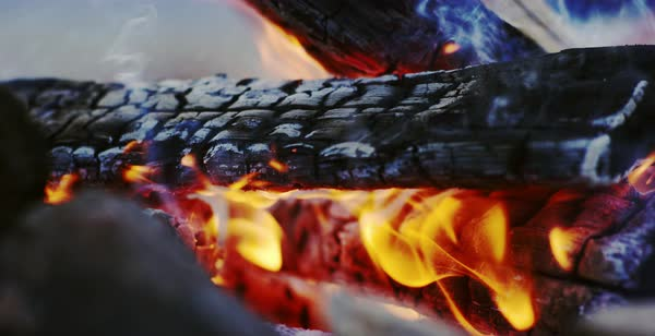 Static shot of logs burning in a campfire Royalty-free stock video