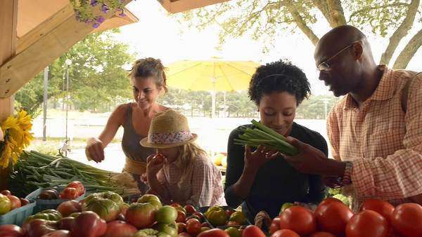 People shopping for produce at farm stand Royalty-free stock video