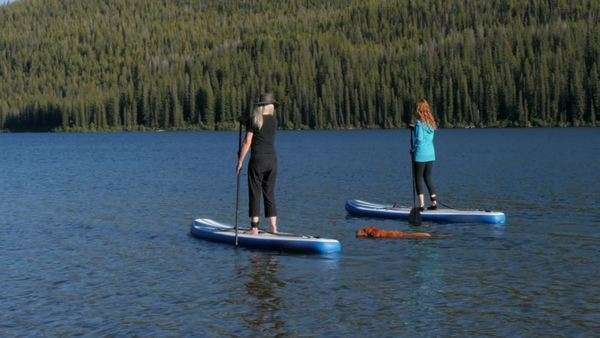 Women paddleboarding in river Royalty-free stock video