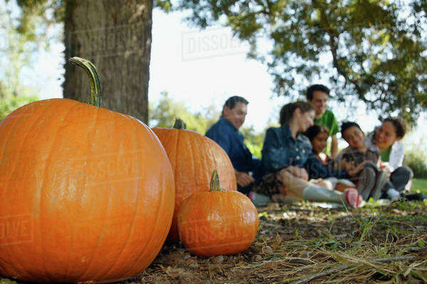 Pumpkins with family in background Royalty-free stock photo