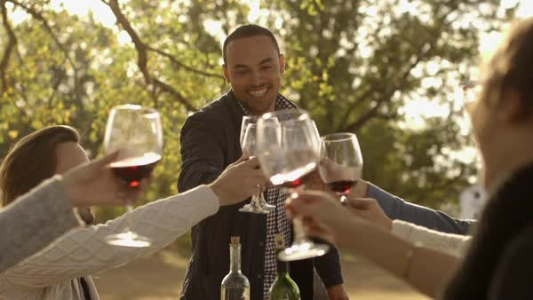 Friends toasting at dinner party Royalty-free stock video