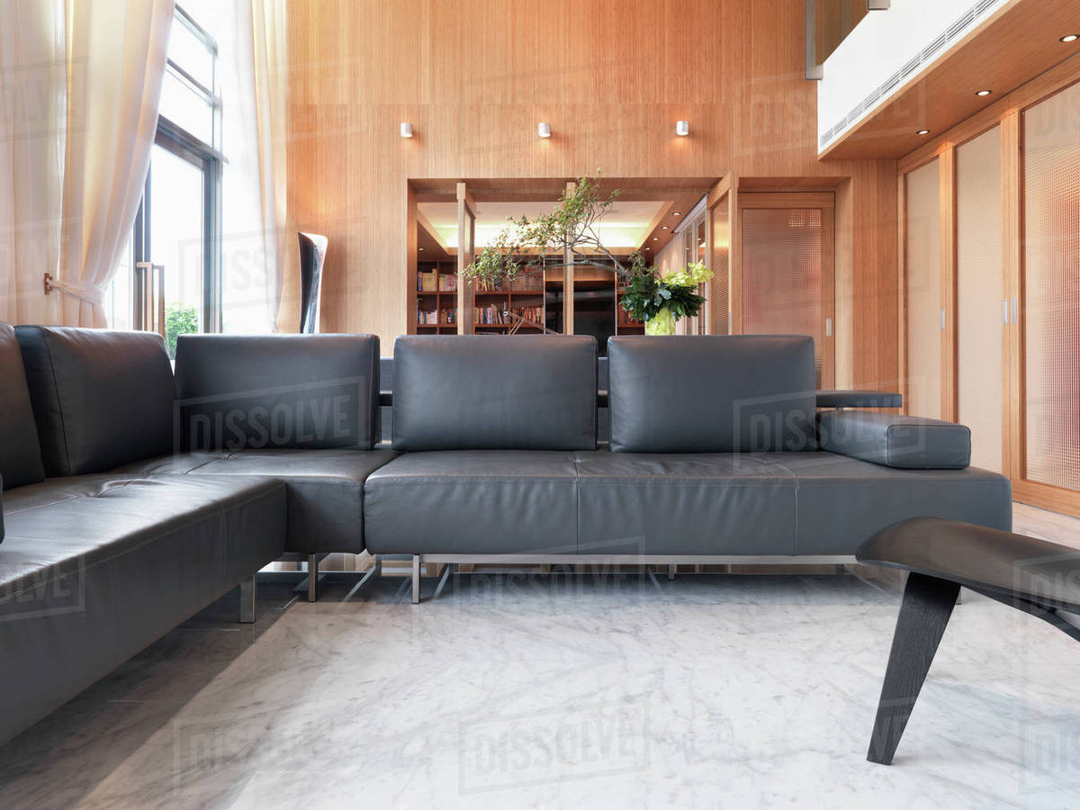 Modern living room with black leather sofa D145_202_019