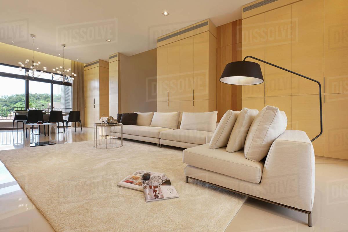 Large Floor Lamp Over Sofa In Modern