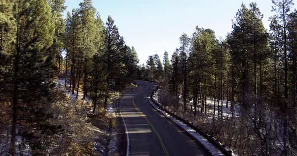 High angle view of tree-lined road, Taos, New Mexico, United States Royalty-free stock video