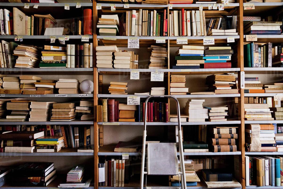 Stepladder by bookshelves in library Stepladder by