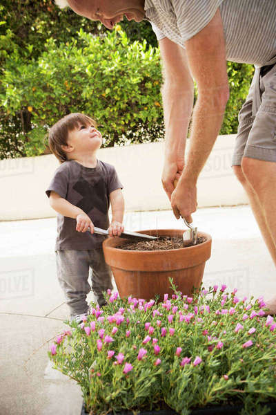 Father and son preparing potted plant Royalty-free stock photo