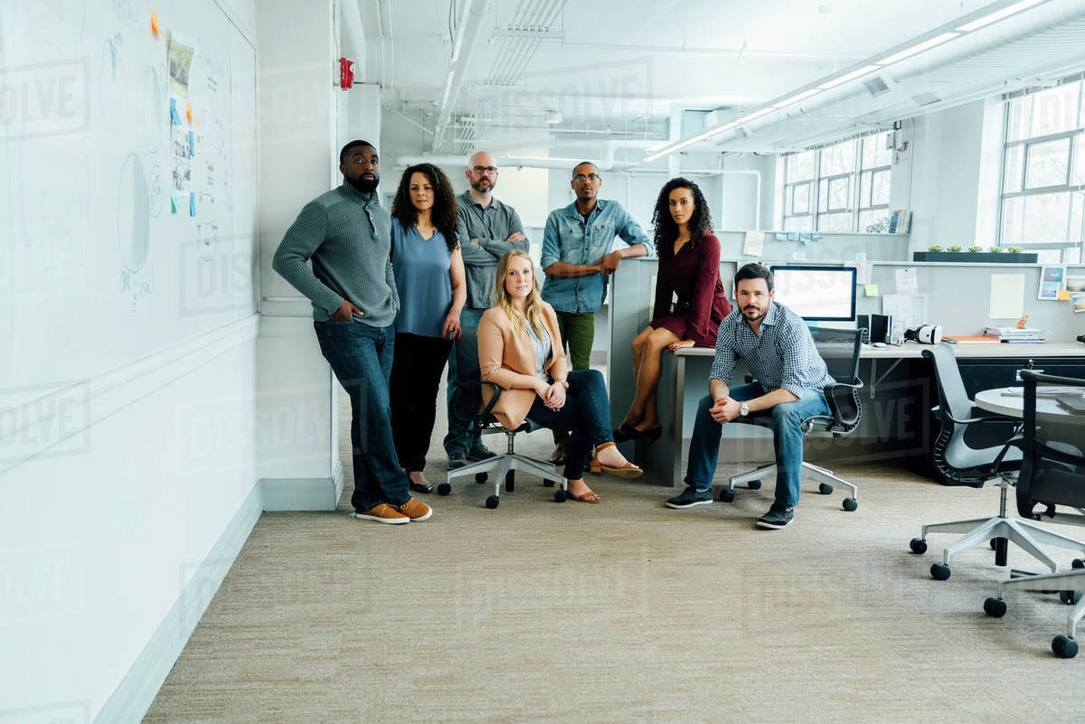 Portrait Of Diverse Business People In Office D145 288 085