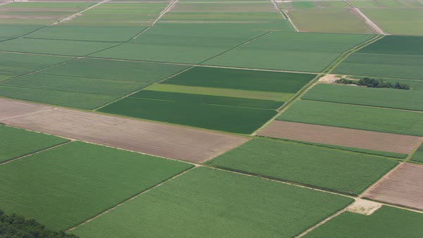 Aerial shot of tracts of farmland in Louisiana Rights-managed stock video
