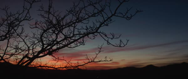 Panning shot of dramatic sky and silhouetted mountains, bare trees in foreground, Los Angeles, California, United States of America Royalty-free stock video