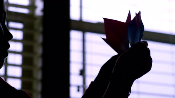 A girl holds up origami flowers she made to a window, silhouette Royalty-free stock video
