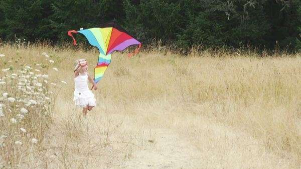 A cute little girl runs toward the camera with a big kite. Royalty-free stock video