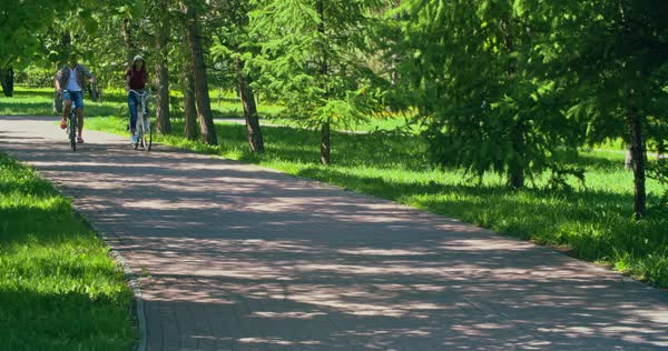 Young couple riding bikes through park on summer day  Royalty-free stock video