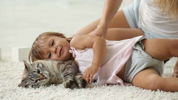 Cute girl cuddling with her furry friend Royalty-free stock video