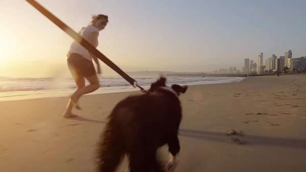 Woman running dog on beach Royalty-free stock video