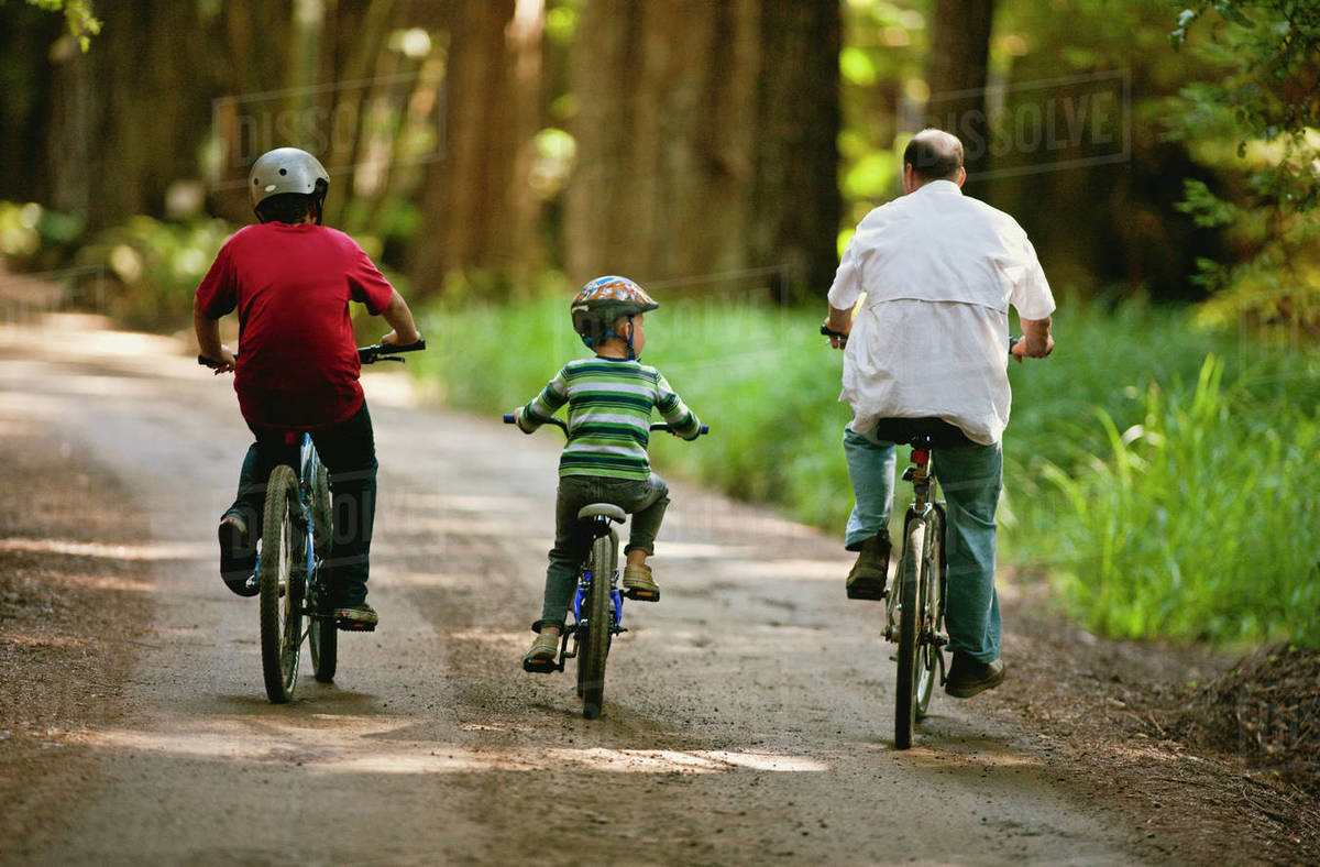 Two boys riding their bicycles with their father through the forest  stock  photo