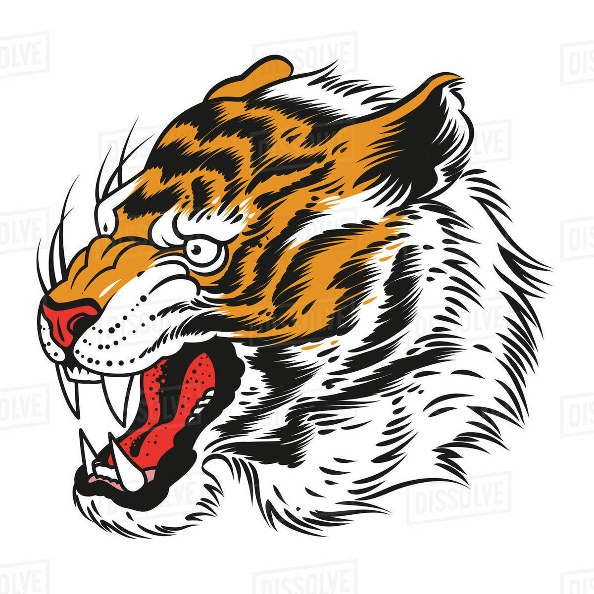 Illustration of a tiger head against white background Royalty-free stock photo