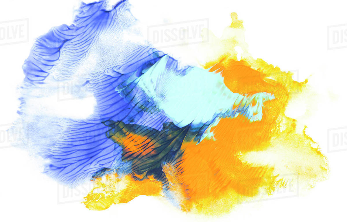 Abstract Painting With Blue And Yellow Paint Strokes On White D2115 244 611