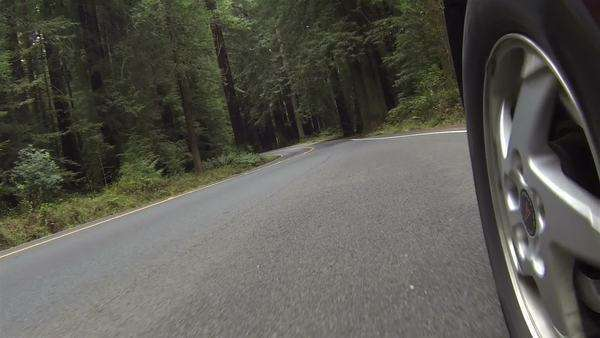Driving car through forest road camera mounted by tire point of view, POV. Royalty-free stock video