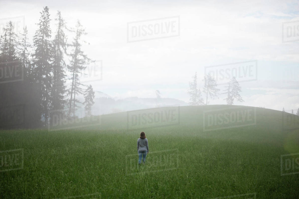 Back view of woman standing in field during foggy evening Royalty-free stock photo