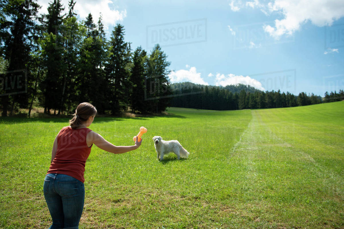 Woman playing with her dog on grass in forest Royalty-free stock photo