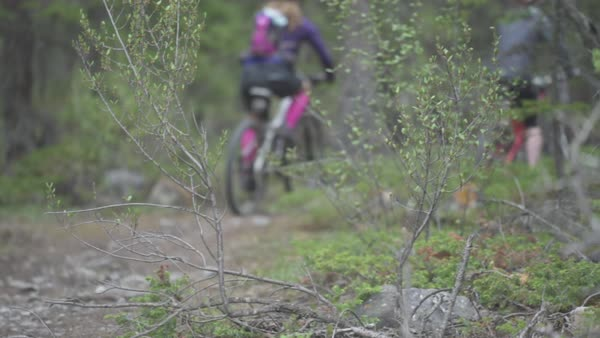 Wide-angle shot of people riding bikes in a forest Royalty-free stock video