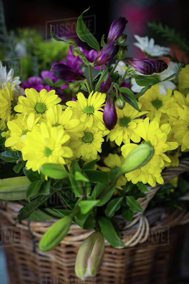 Close Up Of Beautiful Yellow Flowers In The Flower Shop Stock