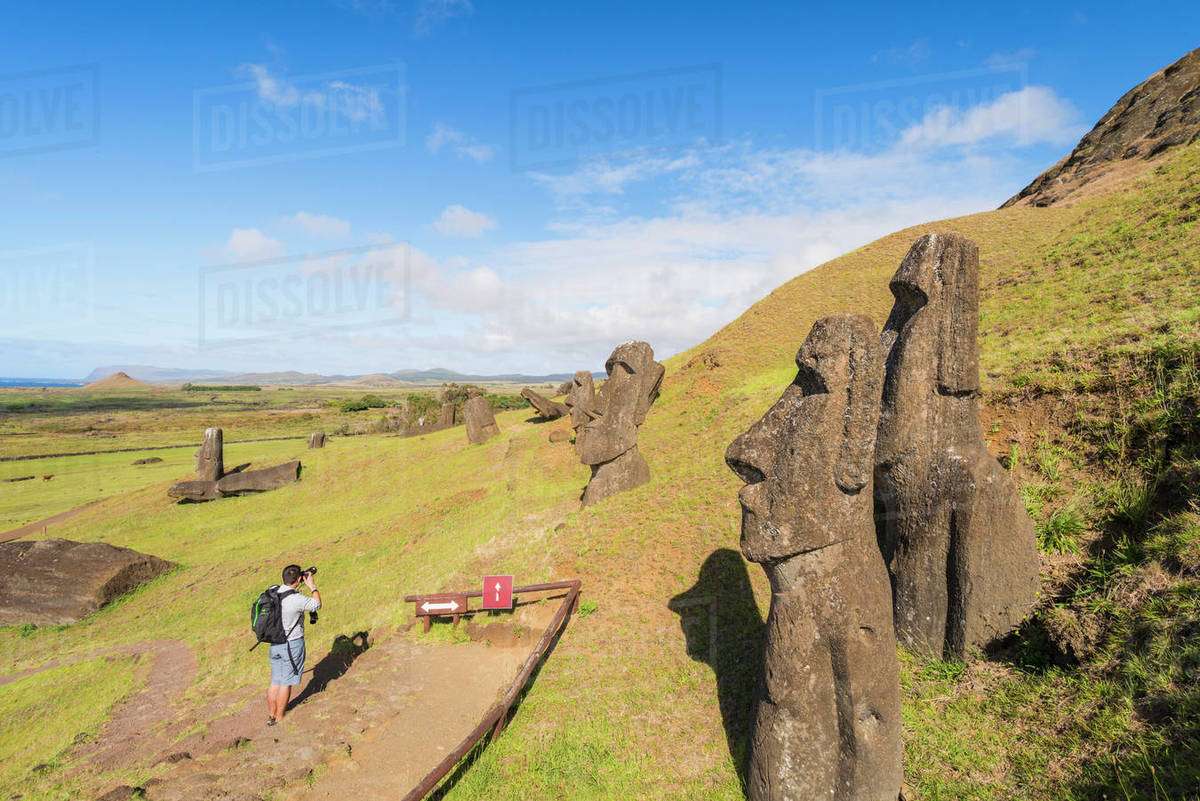 Moai heads of Easter Island, Rapa Nui National Park, UNESCO World Heritage Site, Easter Island, Chile, Polynesia, South America Royalty-free stock photo