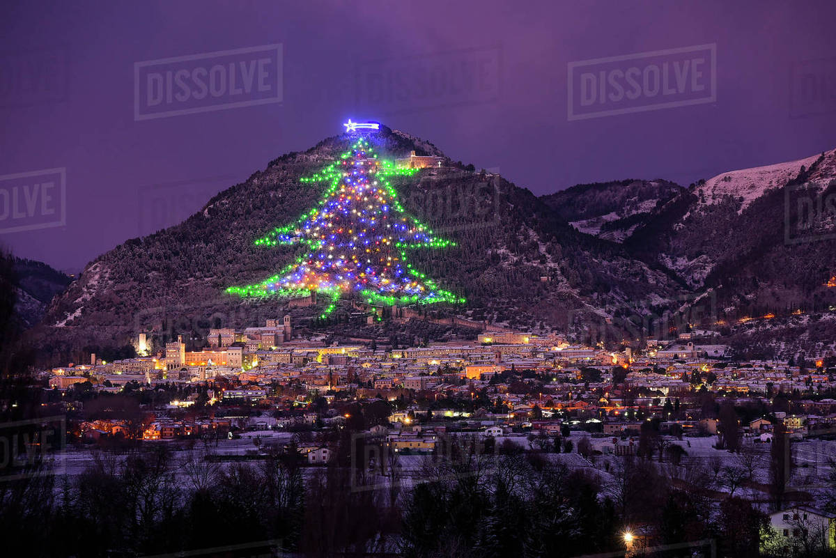 the town and the biggest christmas tree of the world gubbbio umbria italy europe - Biggest Christmas Tree In The World