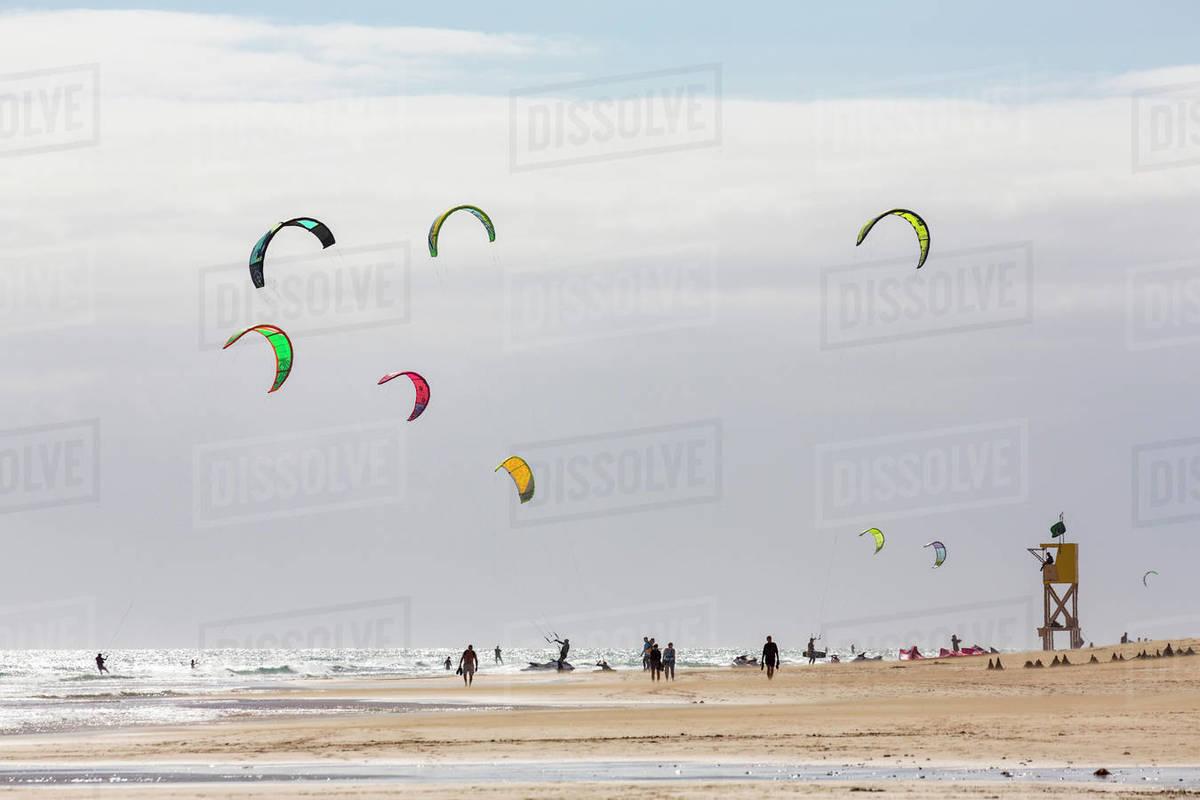 Many people kiteboarding off the Playa de La Barca, Costa Calma, on the volcanic island of Fuerteventura, Canary Islands, Spain, Atlantic, Europe Royalty-free stock photo
