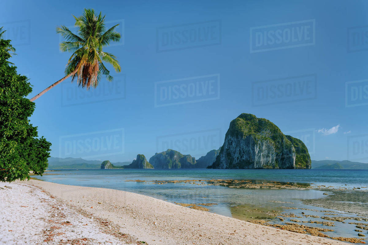 Natural Scenery Beach At Low Tide