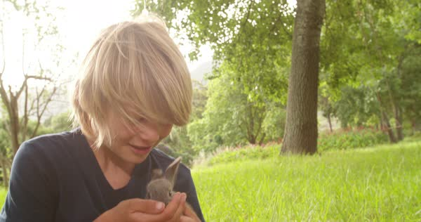 Happy elementary age blond boy takes a little bunny on his arms sitting at the park Royalty-free stock video