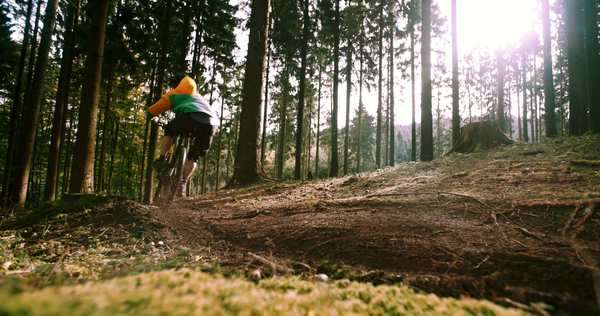 Mountain Biker downhill with mountain bike in slow motion On Forest Trail kicking up dirt Royalty-free stock video