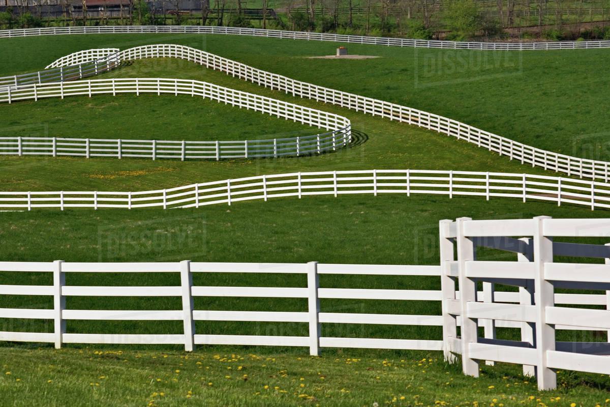 White Fence Winding Across Calumet Horse Farm Lexington Kentucky Stock Photo Dissolve