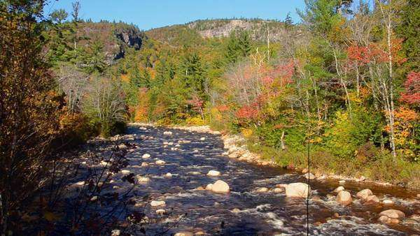 Kancamagus Highway New Hampshire near Conway Swift River with rocks and fall foliage in Northern New England in October color Royalty-free stock video