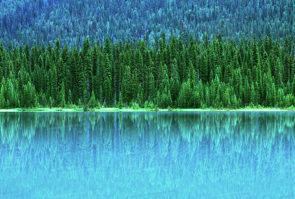 Emerald Lake, Yoho National Park, BC, Canada Royalty-free stock photo