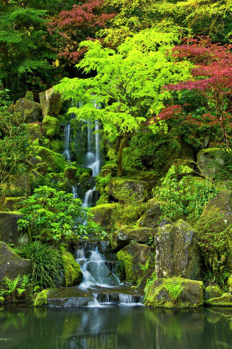 Heavenly Falls Spring Portland Japanese Garden Portland Oregon