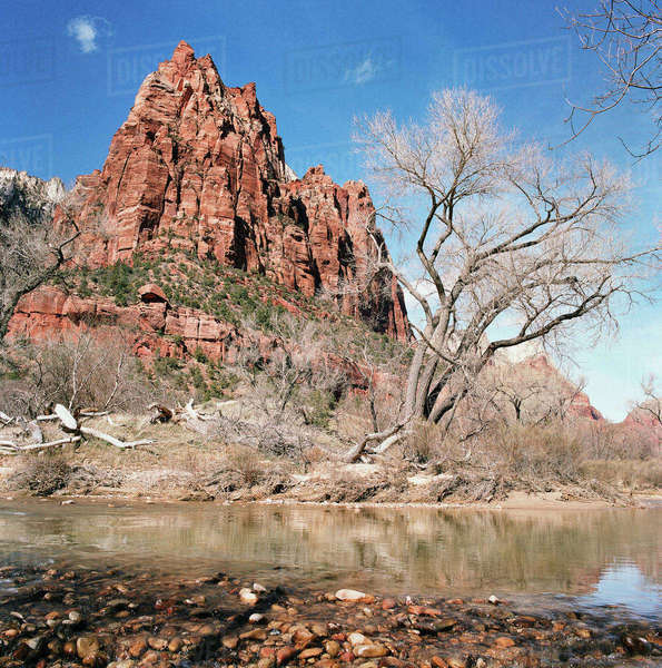 USA, Utah, Zion National Park. Royalty-free stock photo