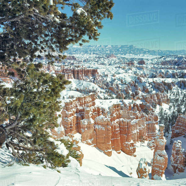 USA, Utah, Bryce Canyon National Park. Snow fall on Bryce Canyon National Park, Utah, fills the canyons and covers the hoodoos. Royalty-free stock photo