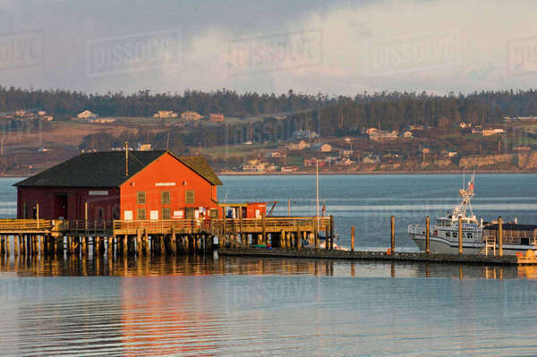 USA, WA, Whidbey Island, Coupeville. Wharf and whale watching boat at first light Penn Cove Royalty-free stock photo