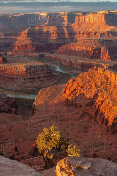 USA, Utah, Dead Horse Point State Park. Sunrise on Colorado River. Rights-managed stock photo