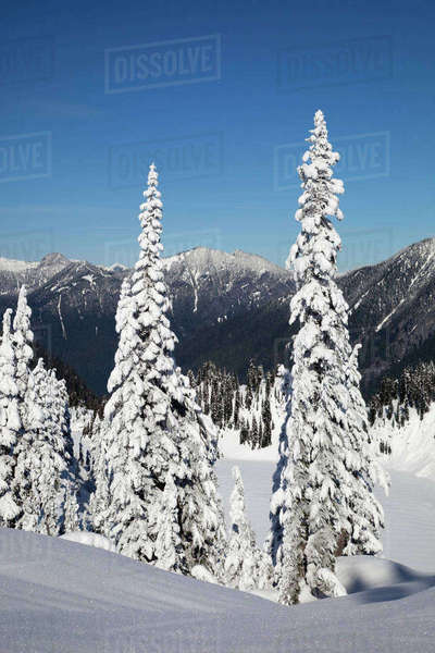 WA, Mount Baker-Snoqualmie National Forest, Frozen Snow Lake Rights-managed stock photo