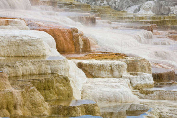 WY, Yellowstone National Park, Mammoth Hot Springs, Travertine Terraces, Canary Spring Rights-managed stock photo