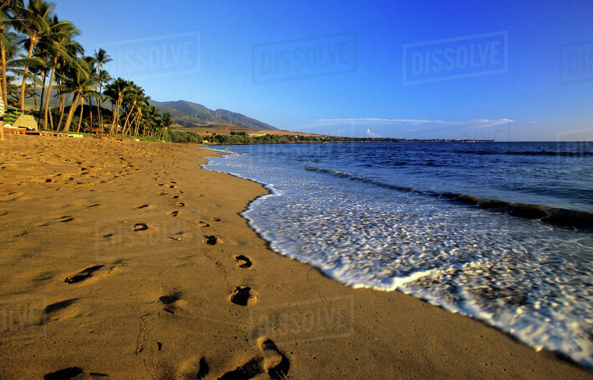 Kaanapali Beach Maui Hawaii Usa D256 56 189