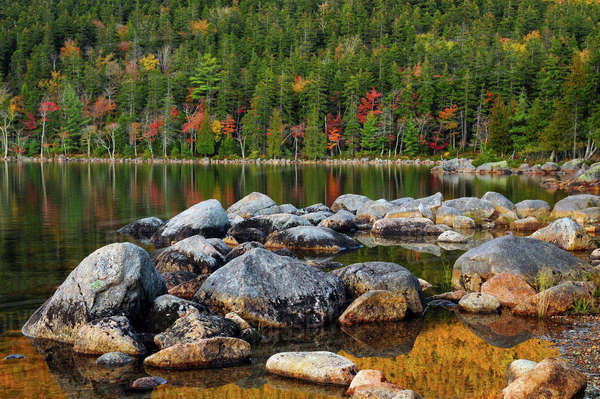 Jordan Pond in Evening Light in autumn, Acadia National Park, Maine, USA Rights-managed stock photo