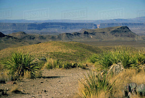 USA, Texas, Big Bend National Park. Scenic landscape of the Big Bend National Park, the largest and also the least visted of the U.S. National Parks. Rights-managed stock photo