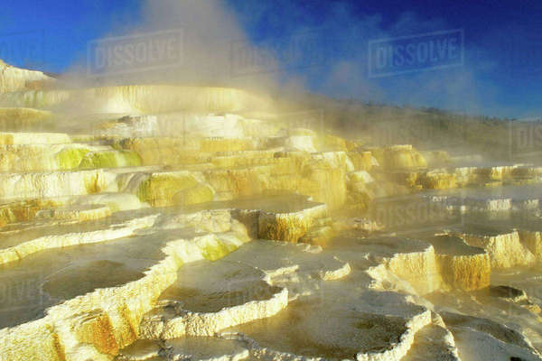 Mammoth Hot Springs in Yellowstone National Park Rights-managed stock photo