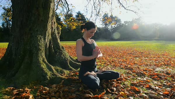 Woman sitting in yoga lotus pose under tree in park Royalty-free stock video