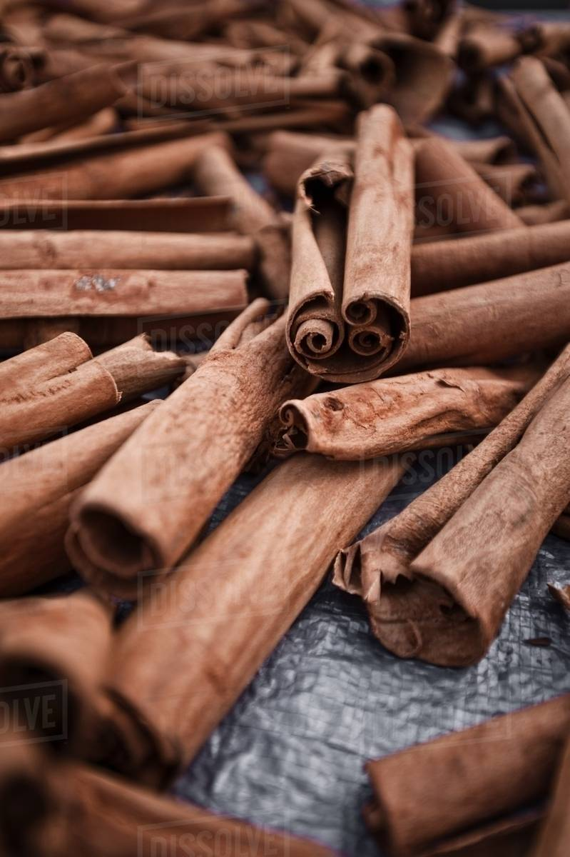 cinnamon sticks at roseau market dominica lesser antilles stock