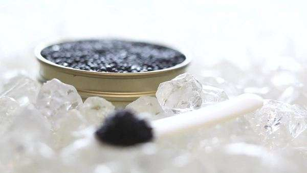 Spoonful of black caviar on ice, tin of caviar behind Rights-managed stock video